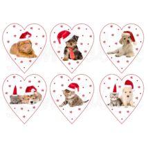 Mintás barkácsfilc - karácsonyi kutyák cicák