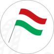Ovis jel mintás barkácsfilc - zászló
