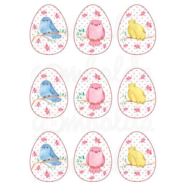 Mintás barkácsfilc - festett madárkák pötyi tojásokban
